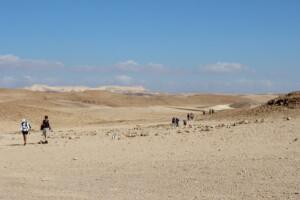 Ørken ved det døde hav
