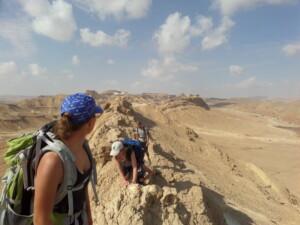 Højderyg i ørkenen