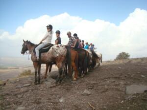 På hesteryg i Golanhøjderne