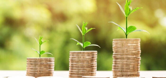 Investering profit mønter
